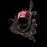 Diane-Venet---Sheila-Concari---Pink-Medusa